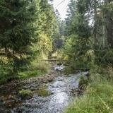 Harz2