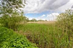 Heuckenlock Landschaft