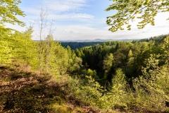 Weserbergland Sababurg23