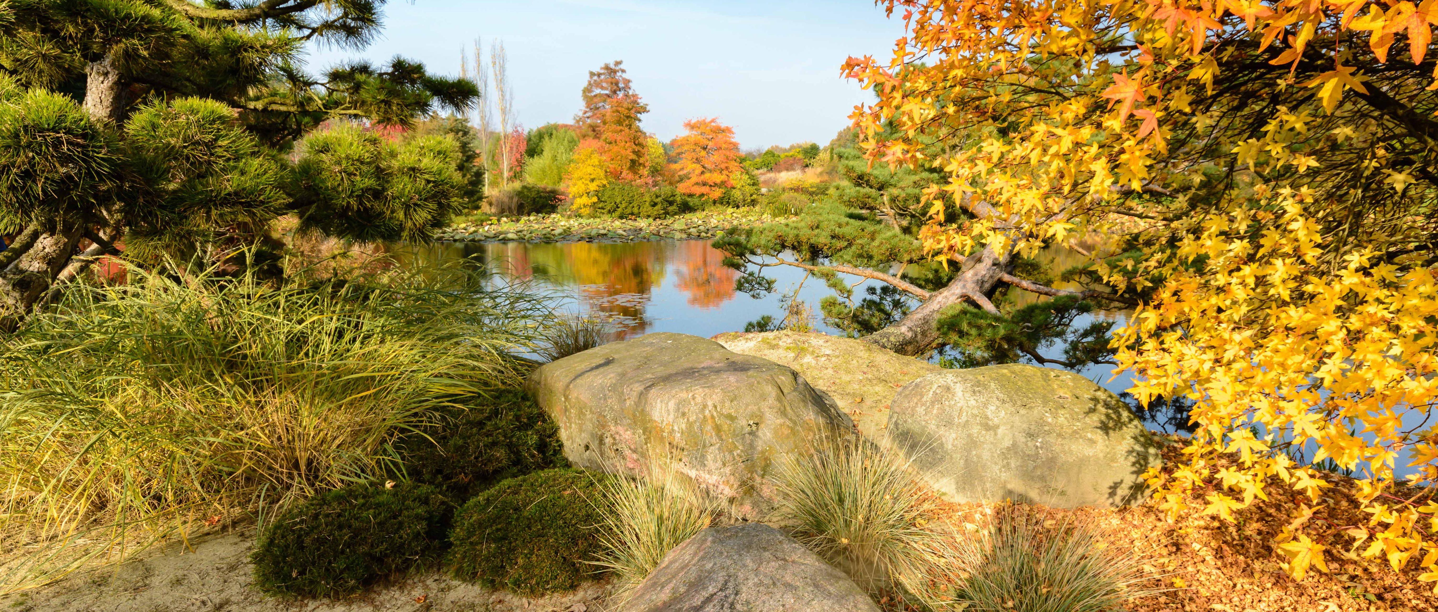 Indian Summer, Herbstfarben in Schleswig Holstein!