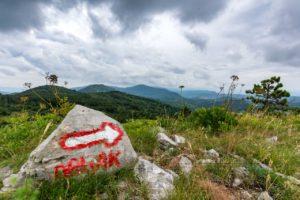 Landschaft,berge,natur,sommer,istrien