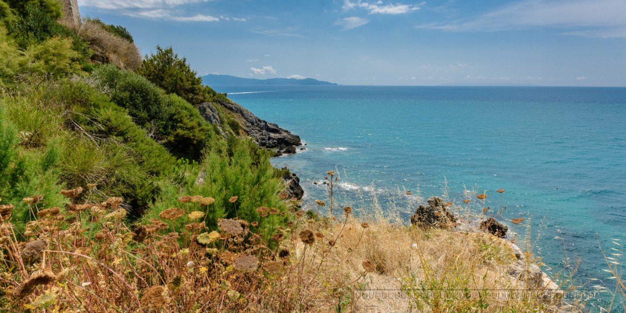 Blick von der Kueste der Maremma auf das Meer