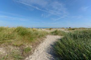 Strand,ostsee,laboe,sommer,gras,sand,himmel,blau