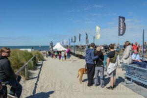 zingst,strand,festival,foto,seebruecke