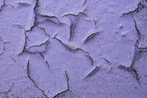 farbe,violett,detail,textur,oberflaeche