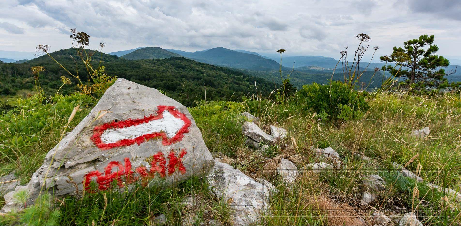 Wanderung zum Gipfel Gomila 1026m, auf Kroatien Istrien.