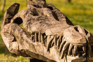 Holz,Skulptur,Krokodilschaedel,Details,Nahaufnahme