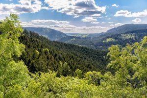 Harz,natur,aussicht,wolken,landschaft,himmel,blau,wolken