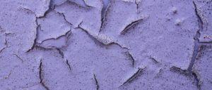 lila,nahaufnahme,textur oberflaeche