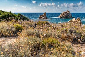 Kueste,Landschaft,Sardinien,meer,natur,felsen