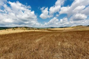 toskana,getreidefeld,feld,wolken,landschaft,natur