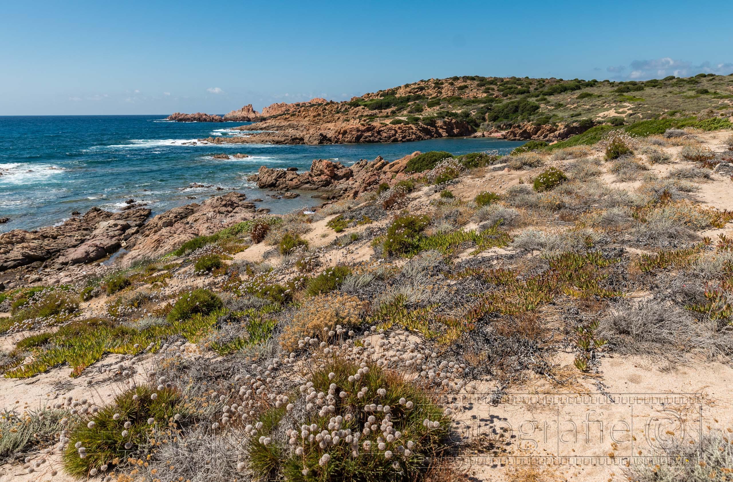 Sardinien, Wanderung von der Isola Rossa zur Cala Rossa.