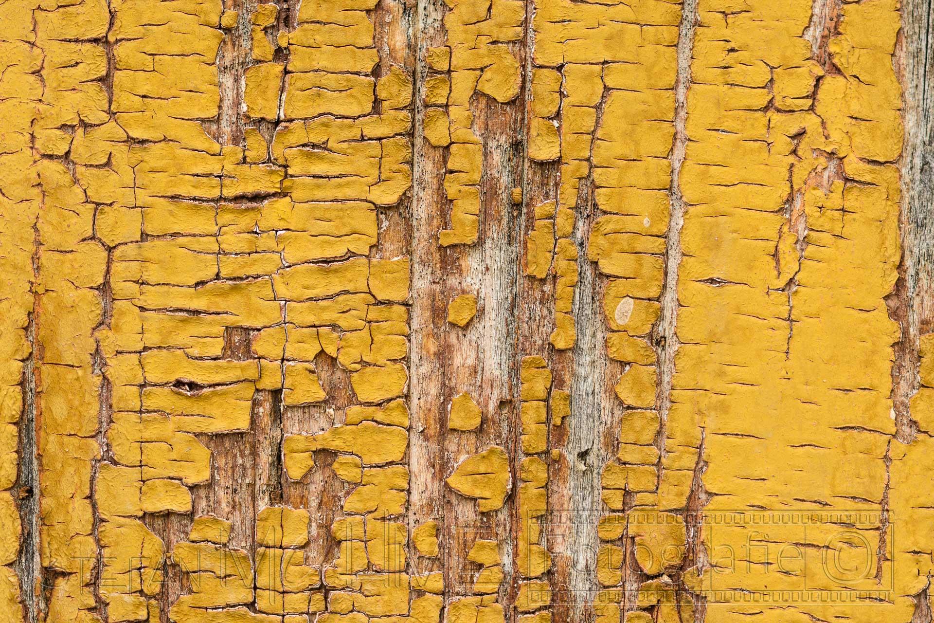 gelb,farbe,alt,oberflaeche,struktur,muster,details,textur,holz