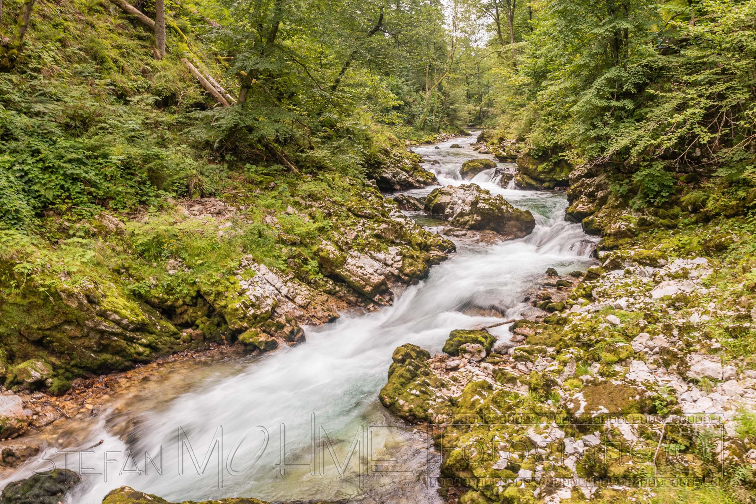 Slowenien Bled Wanderung durch die Vintgar Klamm.