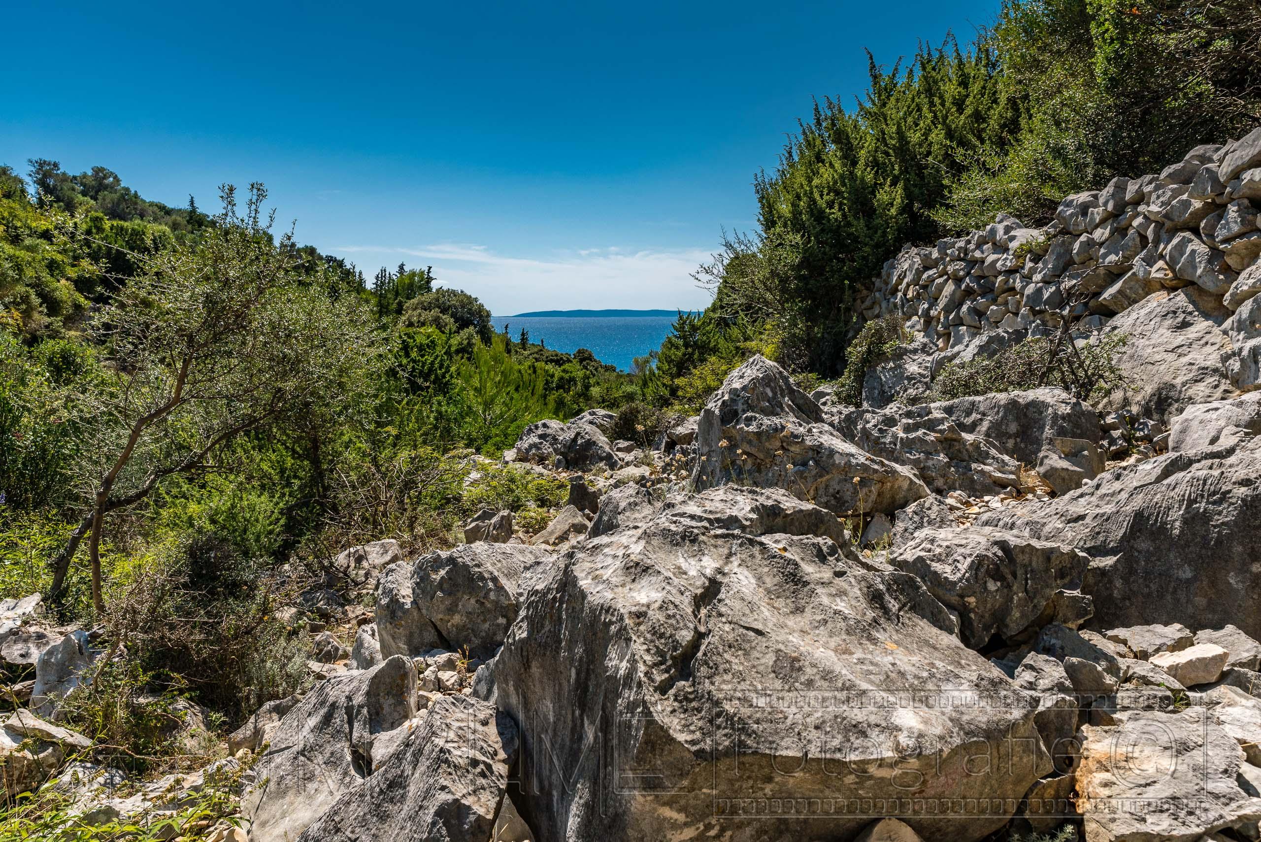 Kroatien Pag, Wanderung durch den Park der Olivenbäume in Lun.