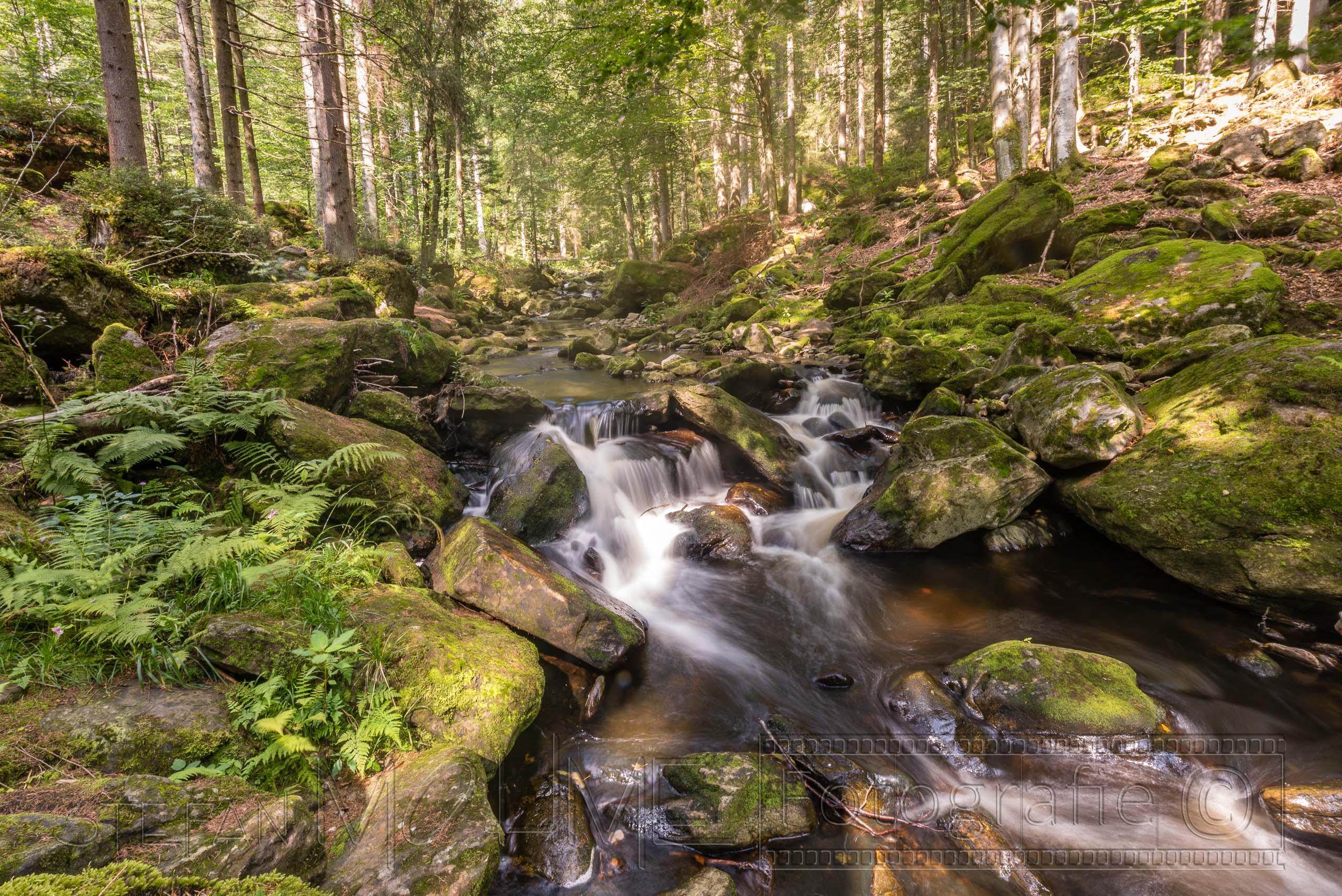 Bayrischer Wald, Wanderung durch die Steinklamm.