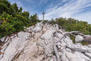 Gipfelkreuz berg vogel