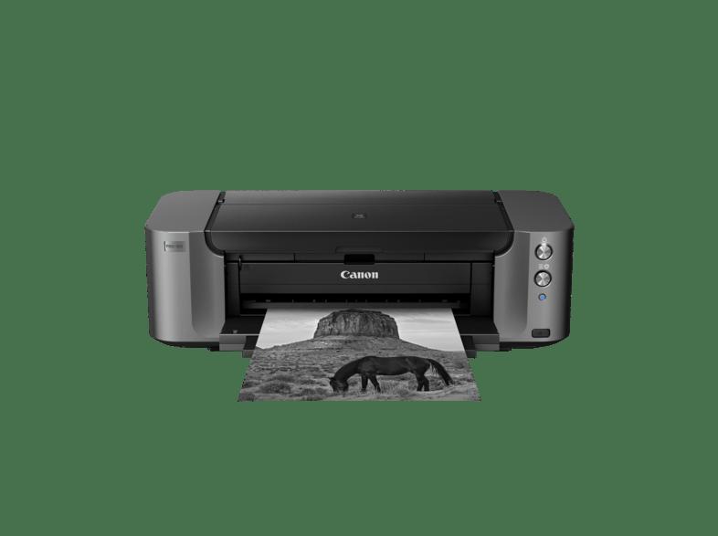 Canon Fine Art Drucker