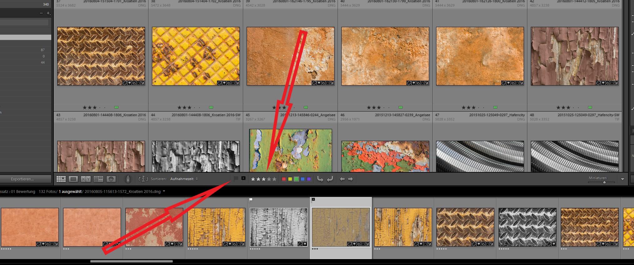 Screenshot Ligfhtroom Bibliothek
