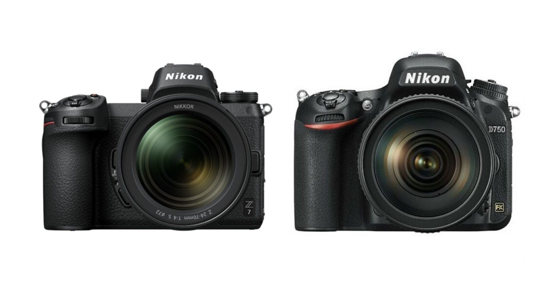 Nikon Kameras