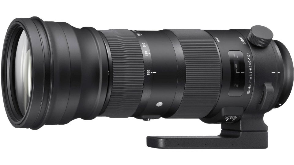 Sigma 150-600mm f/5-6.3 DG OS HSM Contemporary* & Sports