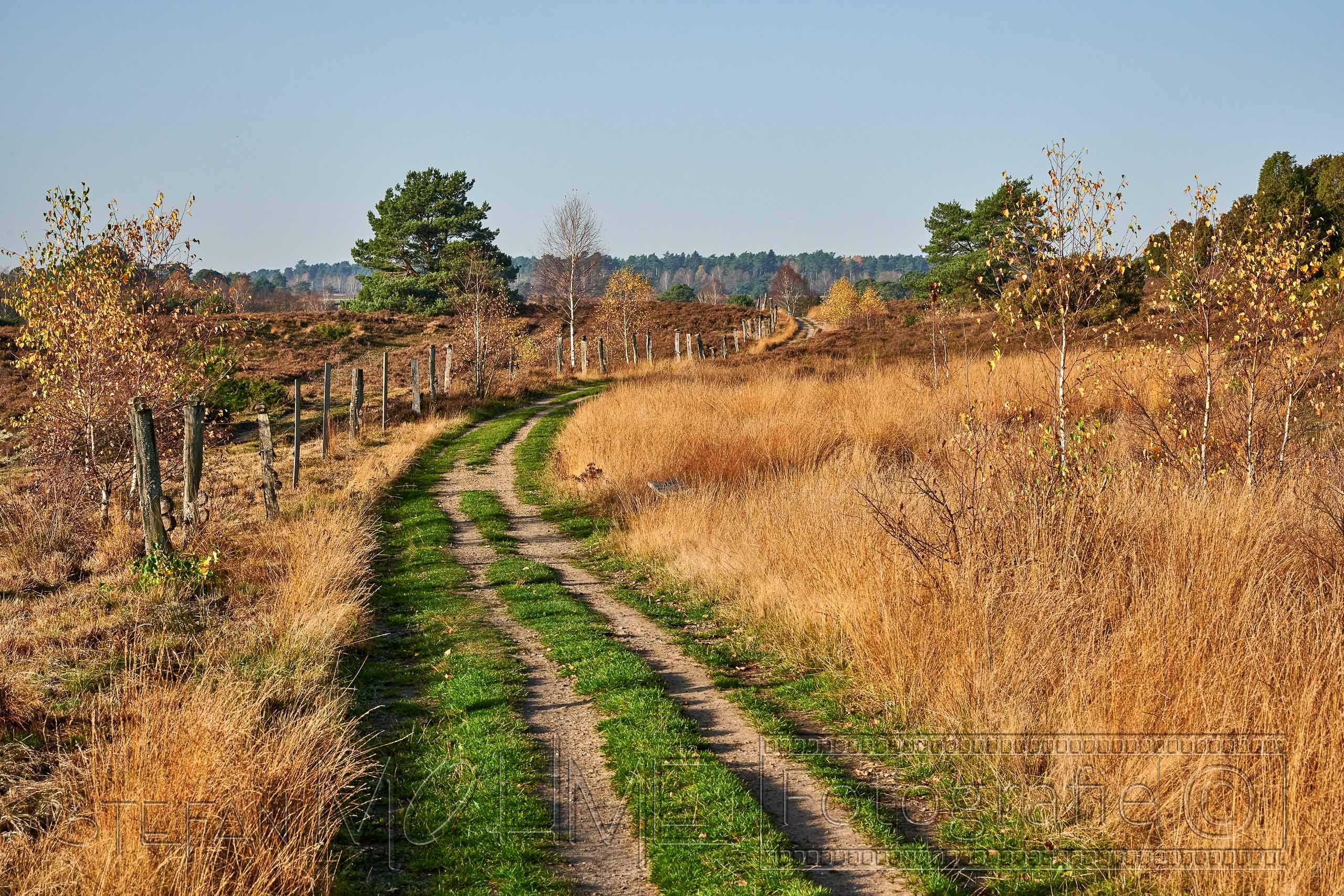 Lüneburger Heide, Kulturlandschaft