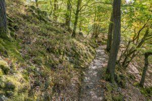 Nationalpark, Kellerwald Edersee, Naturlandschaft