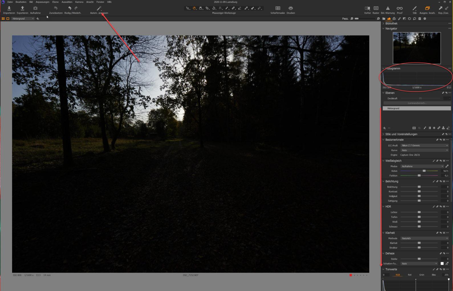 Screenshot, Capture One, Bildentwicklung