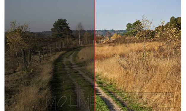 Capture One, mein Bildvergleich mit Lightroom!