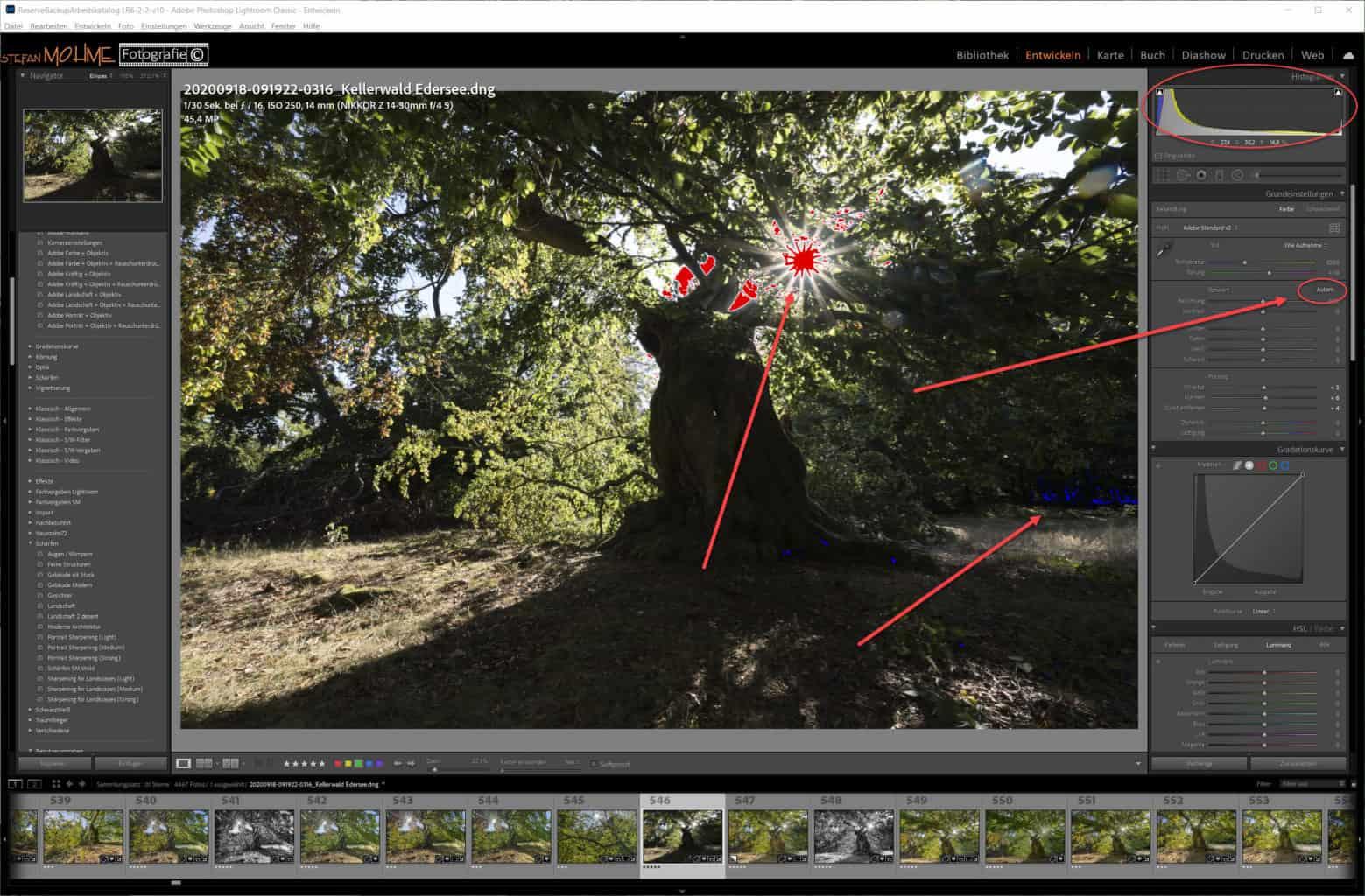 Screenshot Lightroom ,Hutewald ,Making Off