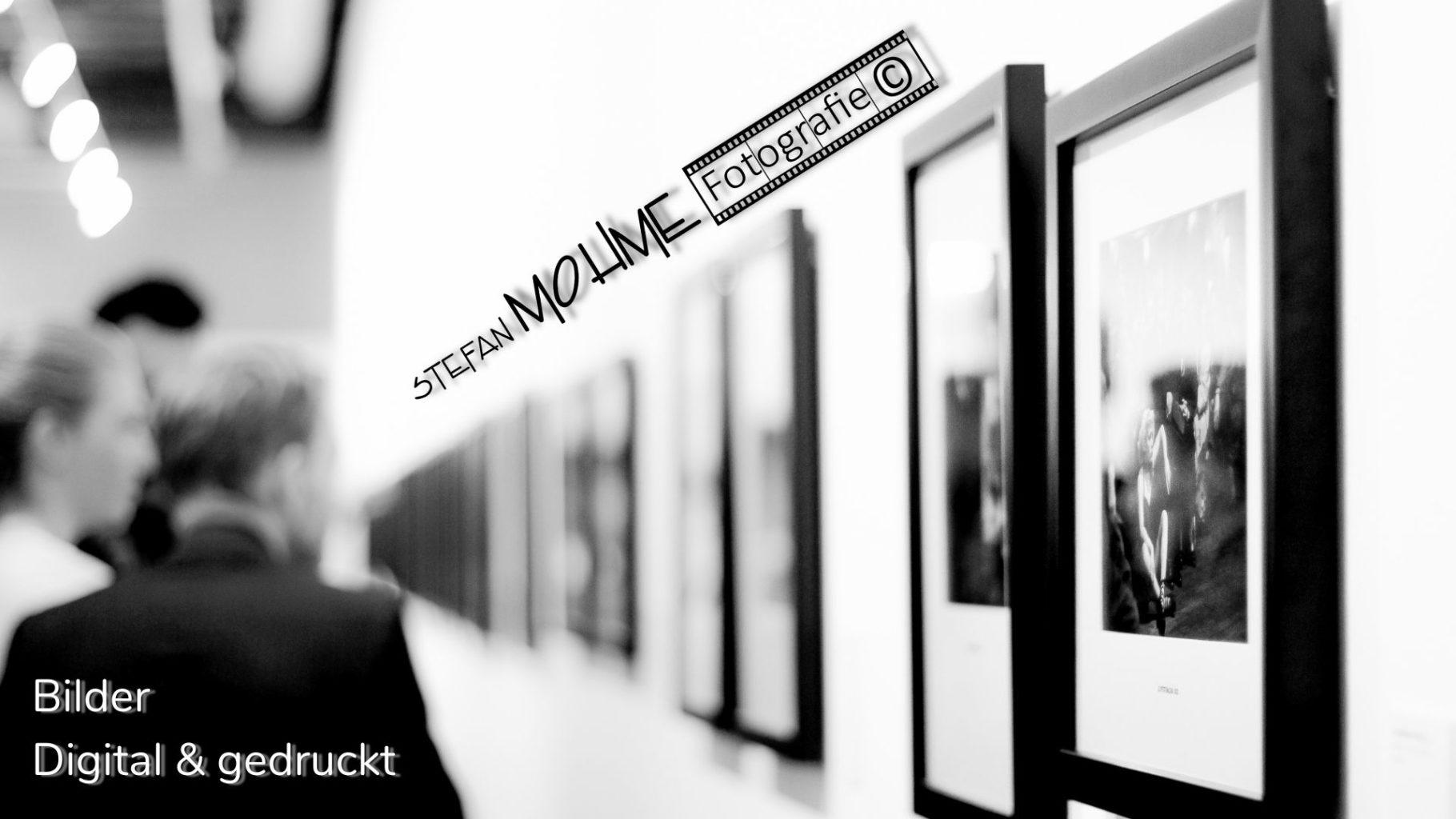 Ausstellung, Bilder, Logo ,Stefan Mohme