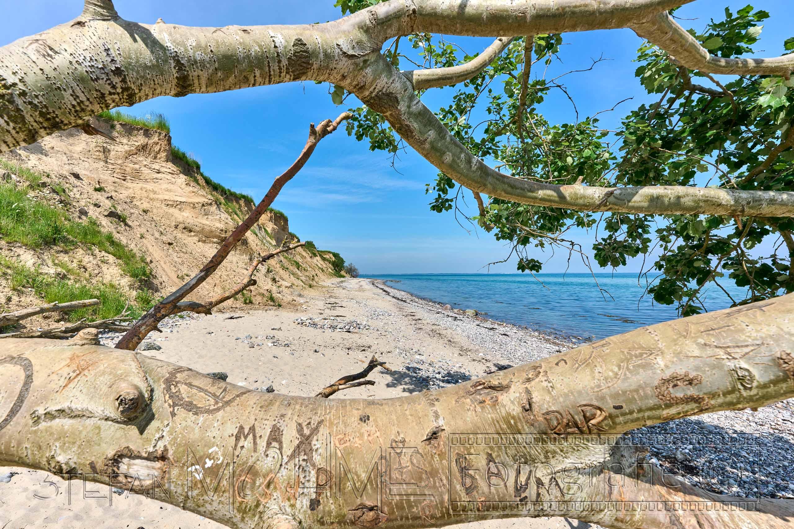 Schwedeneck,Ostsee,Steilküste,Naturlandschaft,Meer