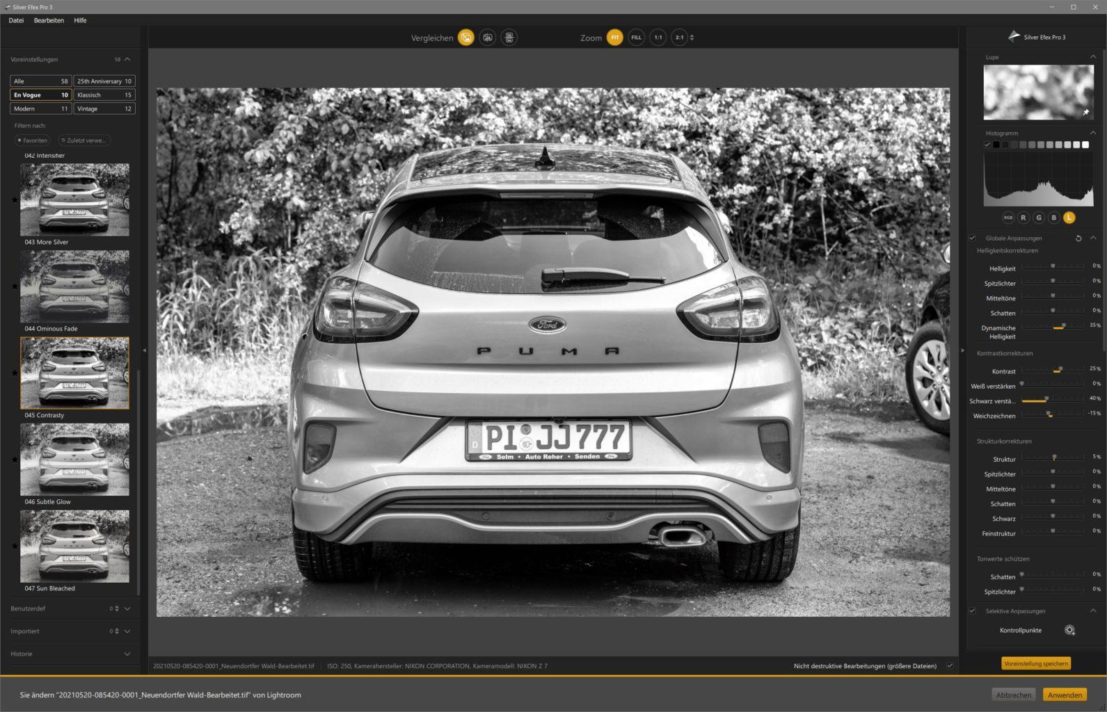 Nik Collection 4, Silver Efex 3,Screenshot, Stefan Mohme