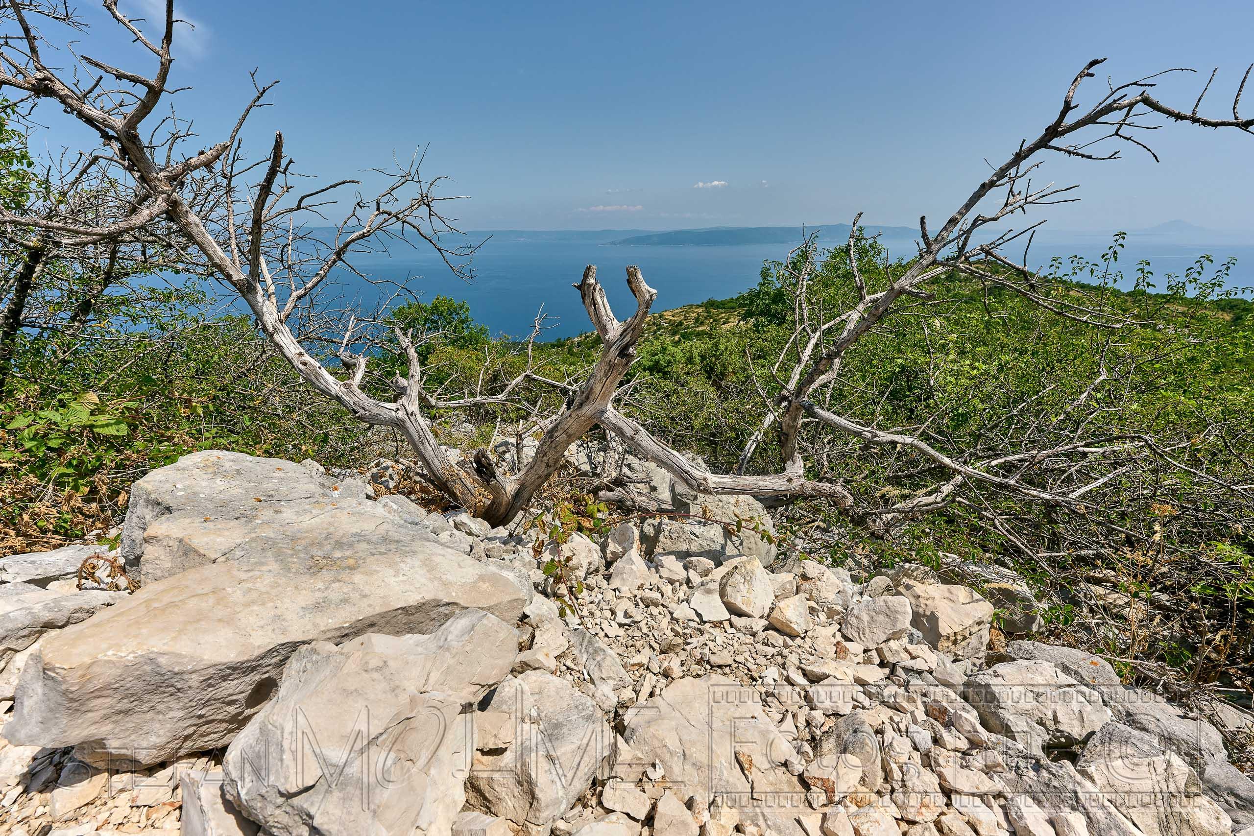 Kroatien, Istrien, Naturlandschaft, Meerblick