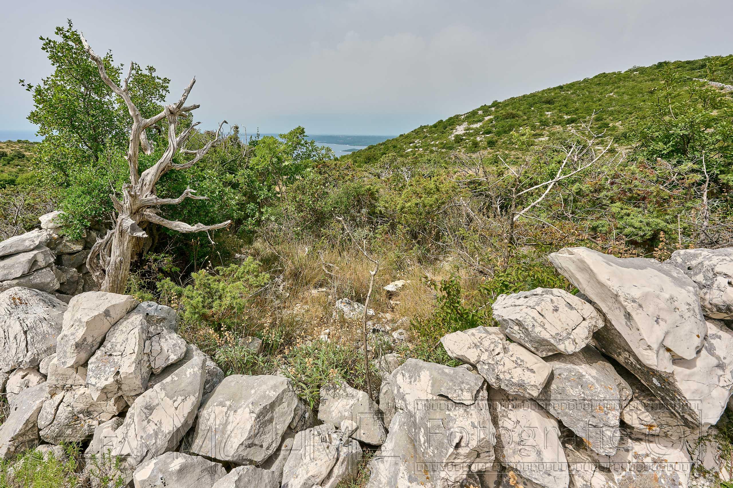 Kroatien, Istrien ,Naturlandschaft, Meerblick