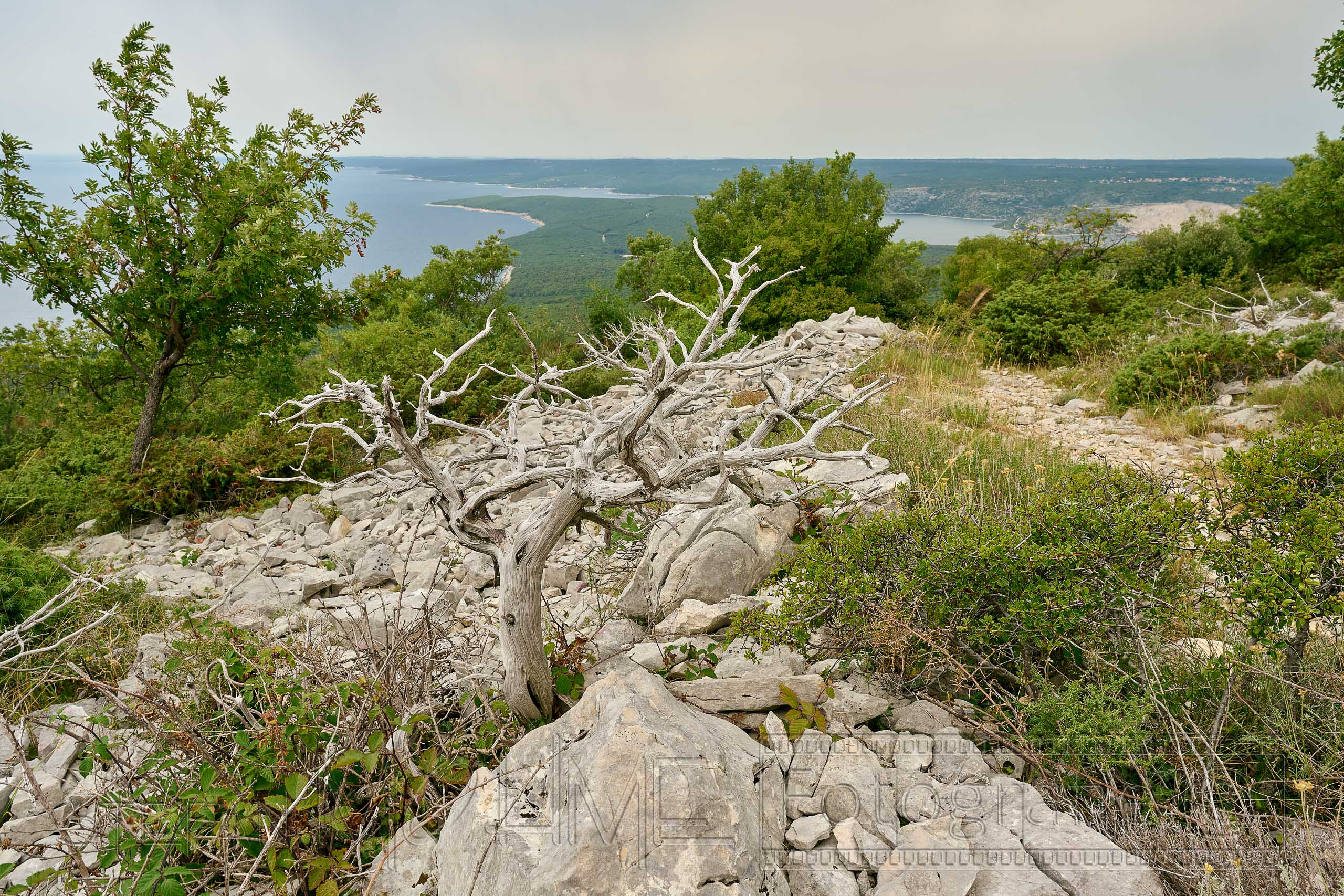 Kroatien ,Istrien ,Naturlandschaft, Meerblick